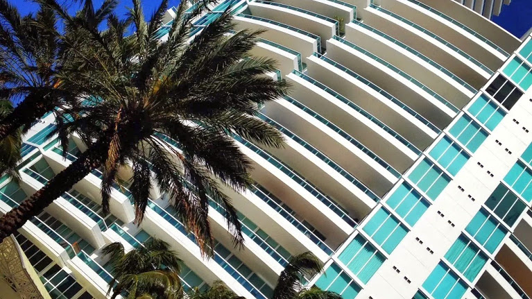 Miami Condo with palm tree in front of it